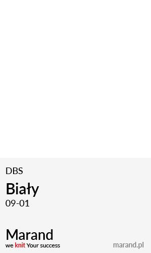DBS – kolor Biały 09-01