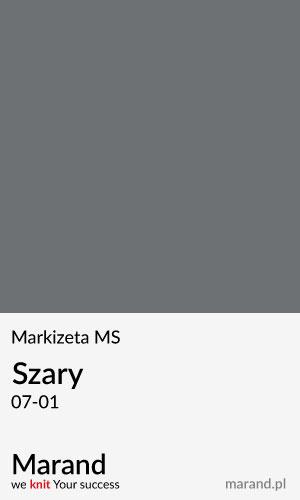 Markizeta MS – kolor Szary 07-01
